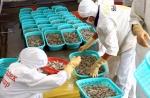 Phát triển chuỗi cung ứng thực phẩm thủy sản an toàn