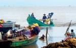 Bình Thuận: Cấm nghề cào Banh lông