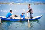 Khánh Hòa: Hỗ trợ 6.000 kg rong sụn giống cho người dân