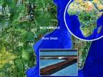 Mozambique: Phát triển tôm giống đặc hiệu miễn dịch bệnh đốm trắng