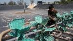 Quảng Nam: 30% diện tích nuôi tôm bị bỏ hoang