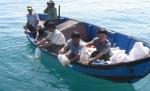 Thừa Thiên - Huế: Thả 1.500 con tôm sú trên biển Thuận An