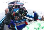 Thanh Hóa: Hỗ trợ đẩy mạnh khai thác xa bờ