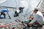 Cà Mau: Trên 300 ha tôm nuôi bị bệnh