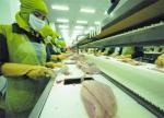 Giải pháp cho công tác quản lý an toàn thực phẩm (Phần III)