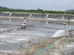 Một số sản phẩm xử lý môi trường nước trong nuôi cá