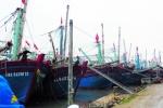 Chuyển đổi khai thác xa bờ tại miền Trung: Một mũi tên, hai đích