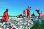 Điểm nhấn thương mại thủy sản 2015