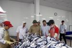Quảng Trị: Tháo gỡ khó khăn cho ngư dân