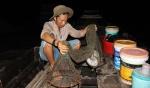 Tiền Giang: Thăng trầm nghề mò cá ngát