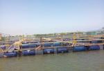 Bà Rịa - Vũng Tàu: Thí điểm nuôi cá biển lồng bè luân phiên