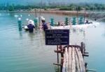 Bình Định: Xây dựng mô hình nuôi theo VietGAP