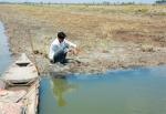 Nuôi trồng thủy sản trong điều kiện biến đổi khí hậu (Phần 2)