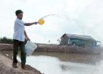 Thừa Thiên - Huế: Nhận hóa chất hỗ trợ dịch bệnh thủy sản