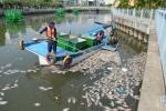 TP Hồ Chí Minh: Giải quyết triệt để ô nhiễm kênh Nhiêu Lộc - Thị Nghè