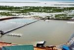 Quản lý chất lượng nước trong ao nuôi TTCT