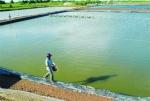 Hỏi - Đáp Thủy sản tháng 7/2016 (P. 1)
