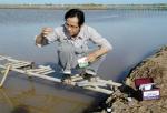 Quản lý môi trường ao tôm nước lợ mùa mưa