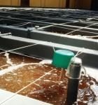 PL - Thức ăn chất lượng cao cho ấu trùng và tôm post