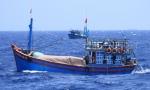 Hải Phòng: Hoàn thiện nâng cấp cảng cá Trân Châu