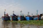 Thừa Thiên - Huế: Hơn 5 tỷ đồng hỗ trợ khai thác hải sản xa bờ