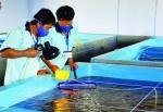 Thủy sản Đắc Lộc - Nhân lực trẻ: Bí quyết cho những thành công