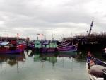 Quảng Nam: Tổ đoàn kết - Niềm tin của ngư dân