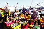 Quản lý nghề cá bền vững: Cộng đồng chung sức