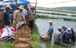 Hướng đến an toàn sinh học trong sản xuất giống thủy sản