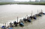 Nghệ An: Khai thác hải sản của Quỳnh Lưu tăng mạnh