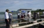 Nghệ An: Thực hiện thành công mô hình nuôi cá leo