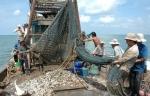 Quảng Trị: Tăng cường quản lý hoạt động của tàu cá