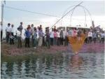 Diện tích nuôi trồng thủy sản VietGAP còn ít