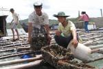 Nuôi trồng thủy sản: Tập trung phát triển các mô hình mới