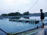 Hà Tĩnh: Thủy sản điêu đứng vì mưa lũ