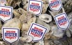 Mỹ: Dùng hàu cải thiện chất lượng nước biển