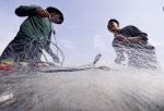 Cải thiện chất lượng lao động nông nghiệp