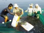 NTM Quảng Ninh: Đột phá từ thị trấn Quảng Yên