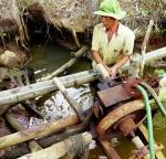 Giải quyết tranh chấp mặn - ngọt tại Cà Mau
