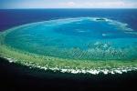 7 tiêu điểm đại dương thế giới 2016