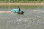 Xây dựng chuỗi giá trị ngành cá tra