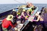 Hội Nghề cá Việt Nam: Phát huy hiệu quả hoạt động