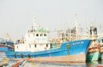 Tạm dừng đóng mới tàu cá vỏ gỗ: Khó cũng phải làm!