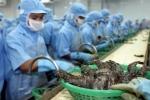 Bộ Công Thương đề nghị Australia sớm bãi bỏ lệnh tạm ngừng nhập khẩu tôm