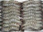 Vi phạm về thực phẩm xuất khẩu sang Australia giảm 50%