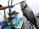 Công nghệ bảo quản thủy sản sau thu hoạch