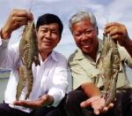 """Chất Lượng Vàng thủy sản Việt Nam: """"Bảng vàng"""" ngành thủy sản"""