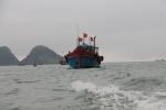 Triệt để ngăn chặn tàu cá vi phạm vùng biển nước ngoài