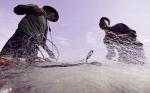 Hội Nghề cá Việt Nam: Không ngừng đổi mới