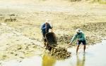 Chậm vào vụ nuôi trồng thủy sản